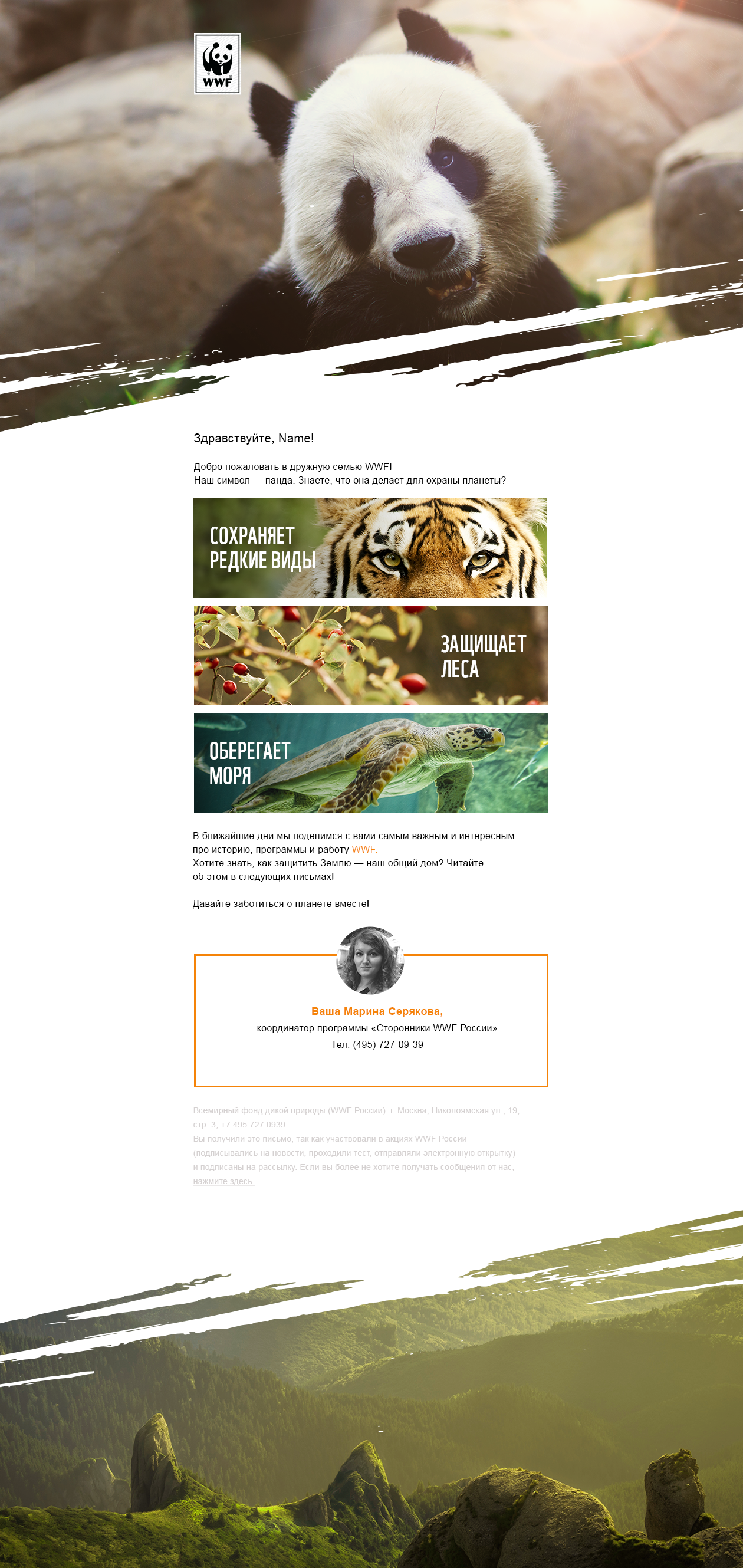 Пример емейла из приветственной цепочки WWF, который послужил основой для дизайна конструктора писем для рассылок